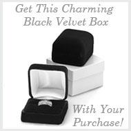 Velvet Jewelry Box